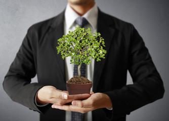 hand plant ,tree