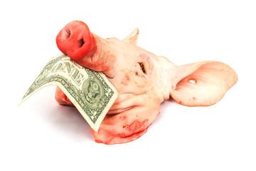 Schweinekopf mit Dollar