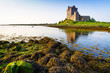 Dunguaire castle in Co. Galway, Ireland - 77796816