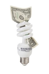 compact fluorescent light bulb with dollar