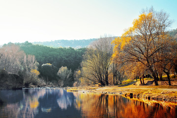 lake in autumn colorful trees