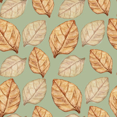 Seamless pattern with tobacco leaf. Watercolor illustration