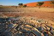 Desert landscape with red dunes, Sossusvlei