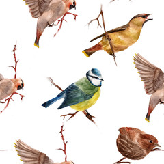 Seamless pattern with birds. Watercolor illustration.