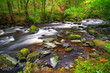 Creek of Clare Glens in Co. Limerick, Ireland