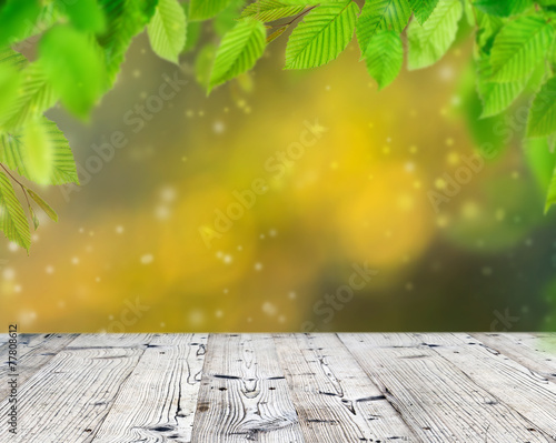 canvas print picture Empty wooden deck table with green leaves
