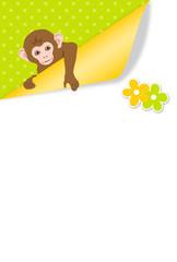 紙をめくる子猿