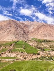 Gebirge Weinanbau