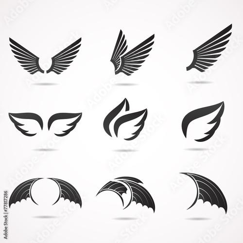 Fototapeta Wing vector icon set.