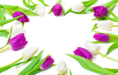 Tulpen, Herz