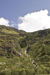 Torrent crossing te mountain