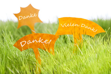 Three Labels With German Danke Which Means Thank You On Grass