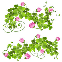 Branches with clover.Floral decoration.