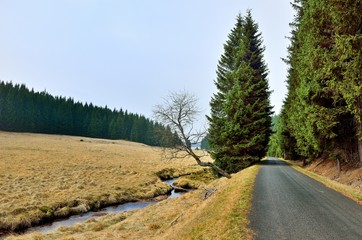 Bachlauf der Rolava neben der Straße bei Prebuz im Erzgebirge