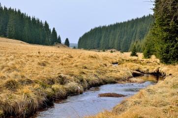 Die Rolava (Rlau) im Erzgebirge bei Prebuz - Tschechien