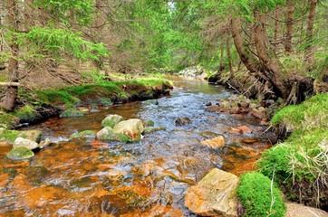 Fluß im Erzgebirge - Rolava (Rolau)