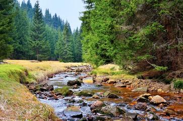 Mittellauf der Rolava (Rolau) im Erzgebirge bei Nove Hamry