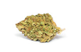 Marijuana bud on white background