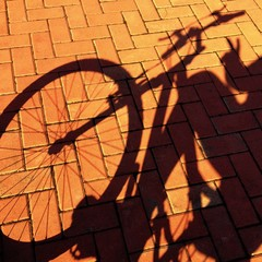 shadow of bicycle