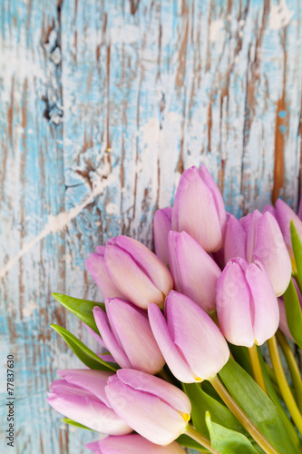 Pink tulips on wooden planks - 77837630