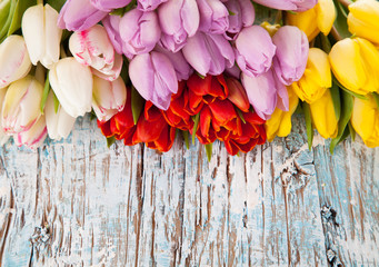 Colored tulips on wooden planks