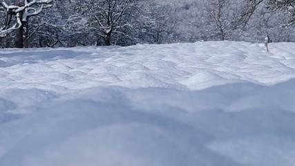 Snowy plowed field