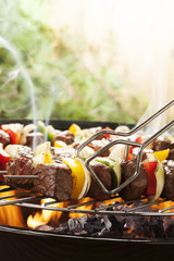 Grilled beef skewers with onions and peppers color.