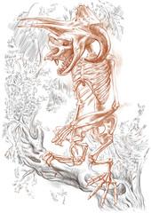 legendary animals and monsters: BIGFOOT