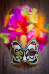 carnival mask on color feathers