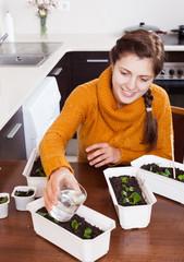 gardener working with green seedlings