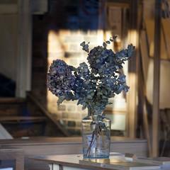 Bouquet of eucalyptus in glass vase in interiour