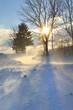 Winter landscape in strong wind - 77850290