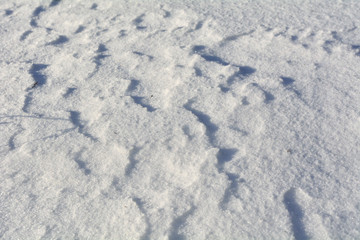 Natural snow background