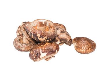 Shitake mushrooms isolated on white background