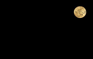 Goose Moon VI
