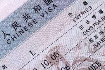 Macro of a Chinese Visa document