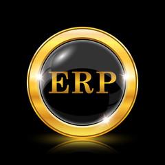 ERP icon