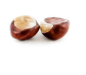 Frucht bzw. Samen der Gewöhnlichen Rosskastanie