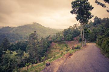 Sri Lanka nature