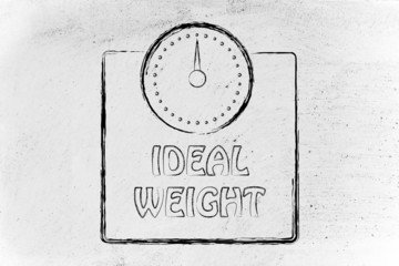 nutrition, dieting and ideal weight: scale design, concept of he