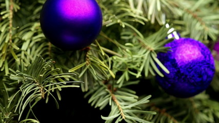 Coniferous Tree with Colorful Balls Rotate on a Dark Background