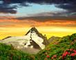Leinwandbild Motiv Grossglockner in the sunset, National Park Hohe Tauern, Austria