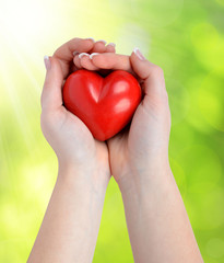 heart in hands on green natural background