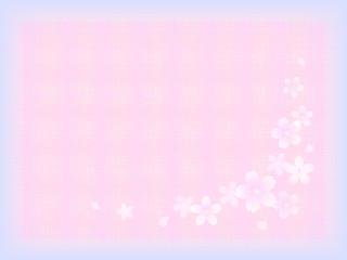 テキスタイル 桜4