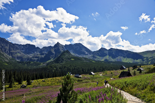 Fototapeta View of the most beautiful valley in the Polish Tatras