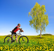 Biker with the mountain bike in the dandelion field