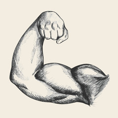 Sketch illustration of muscular human male right arm
