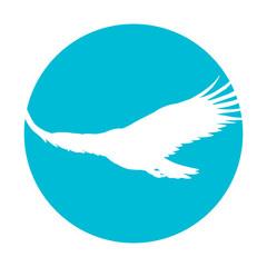 Icon of a soaring eagle