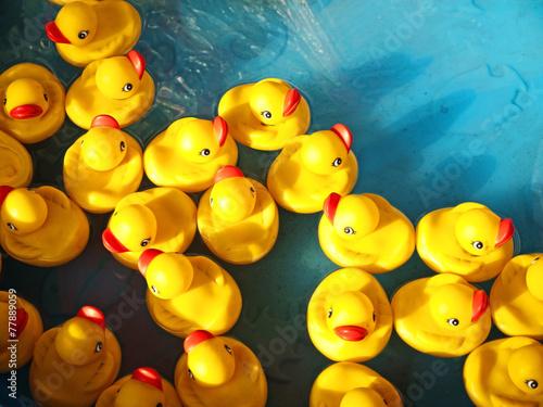 Leinwanddruck Bild rubber ducks