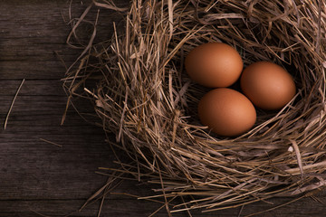 chicken organic eggs with straw in nest on burlap background